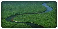 Les rivières d'Afrique