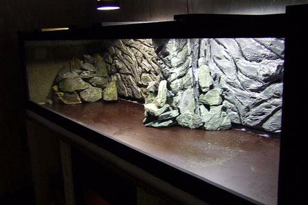 décor aquarium ville